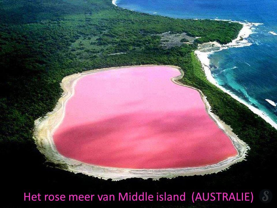 Het rose meer van Middle island (AUSTRALIE)