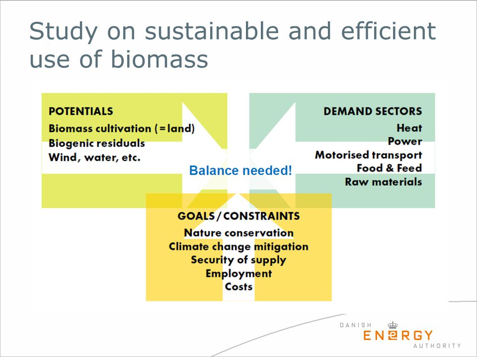 Study on sustainable and efficient use of biomass