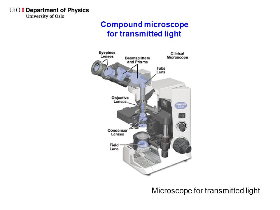 Compound microscope for transmitted light Microscope for transmitted light