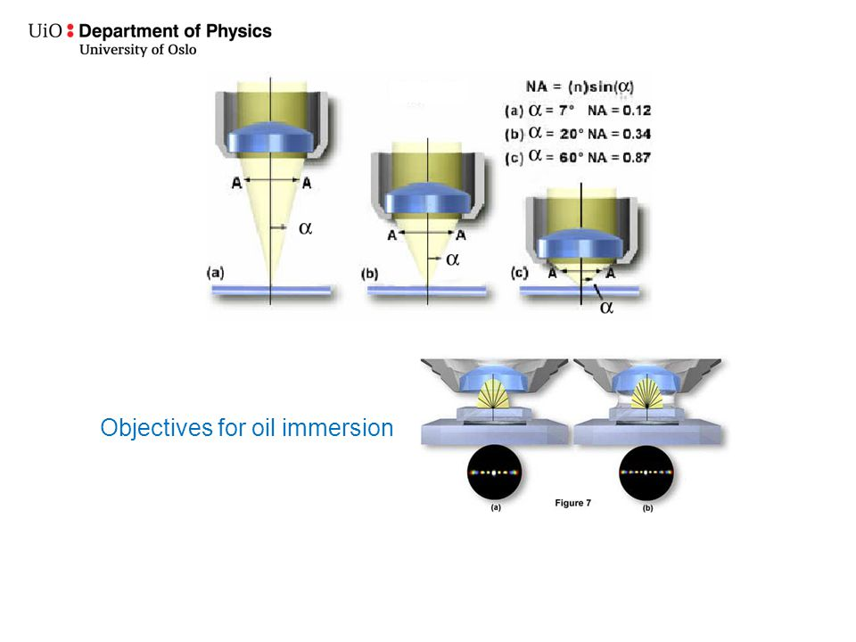 Objectives for oil immersion