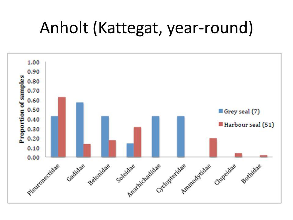 Anholt (Kattegat, year-round)