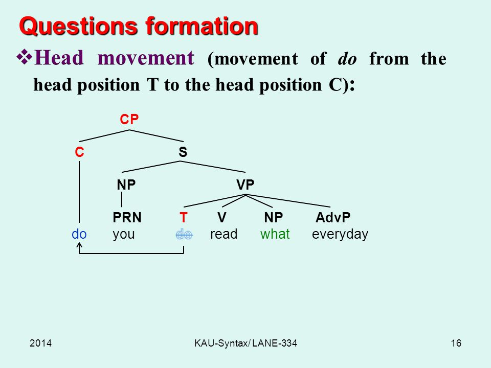 Questions formation Head movement (movement of do from the head position T to the head position C):