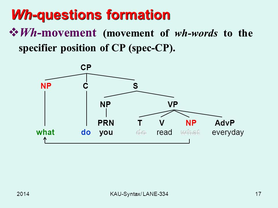 Wh-questions formation