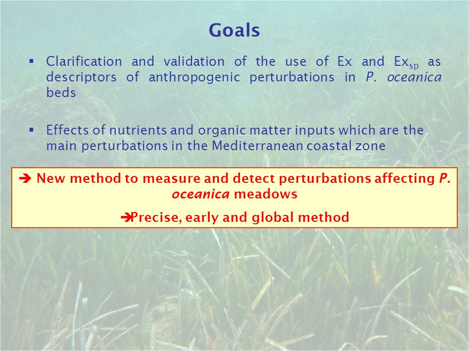 Precise, early and global method