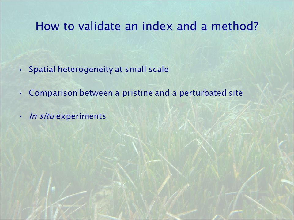 How to validate an index and a method