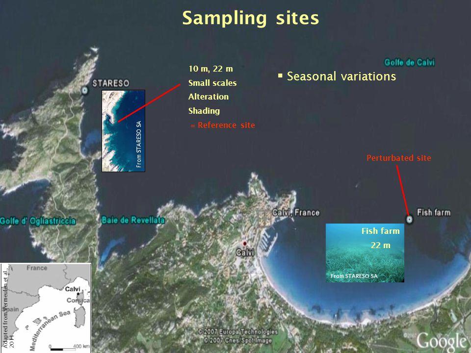 Sampling sites Seasonal variations 10 m, 22 m Small scales Alteration