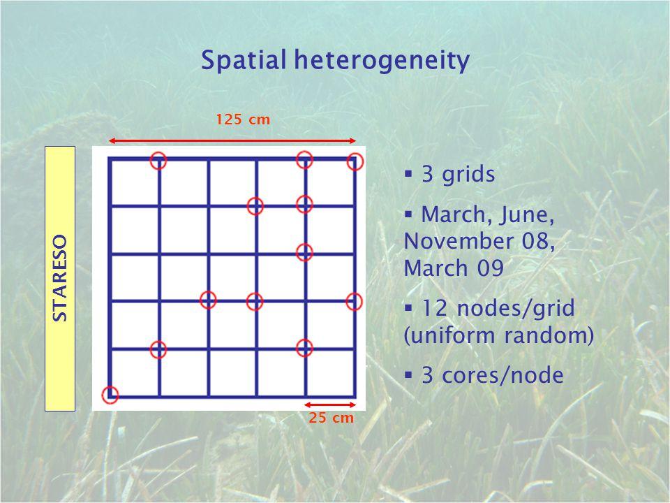 Spatial heterogeneity
