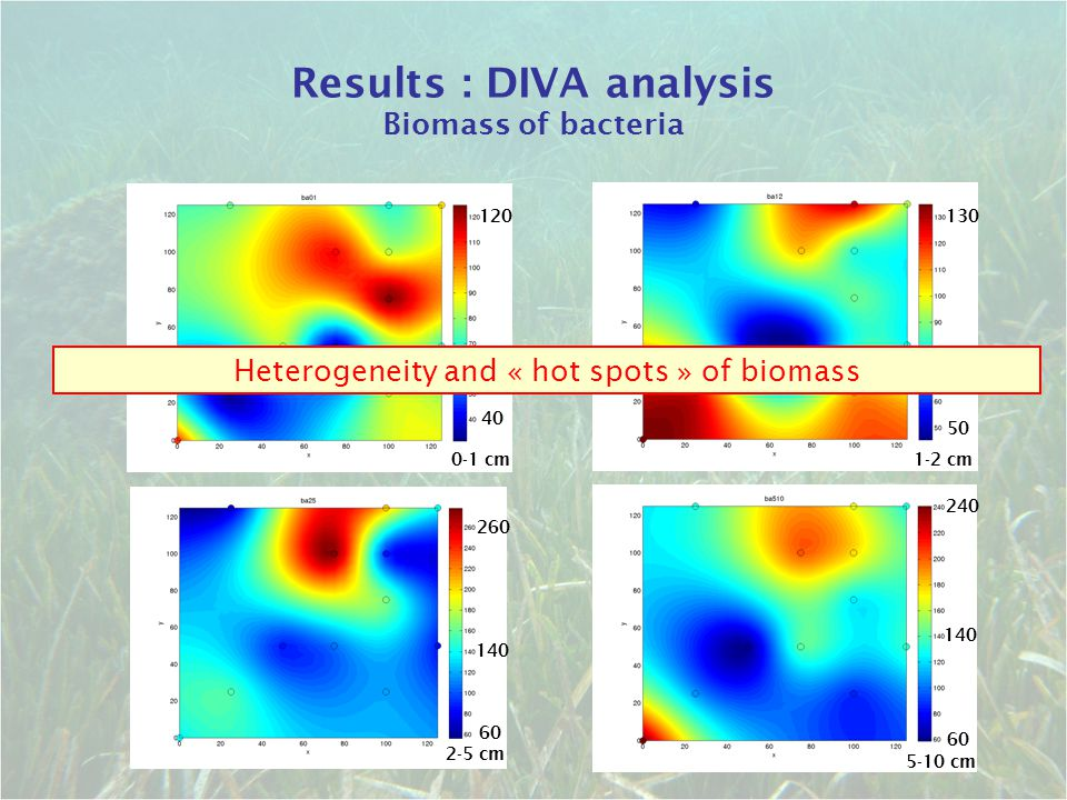 Results : DIVA analysis Biomass of bacteria