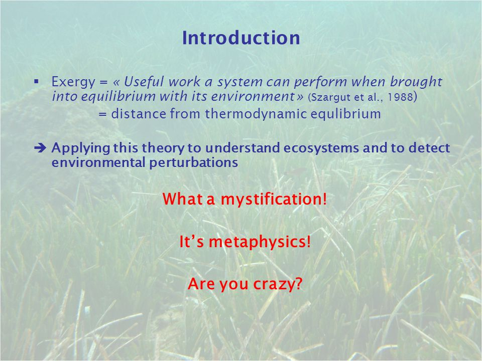 Introduction What a mystification! It's metaphysics! Are you crazy