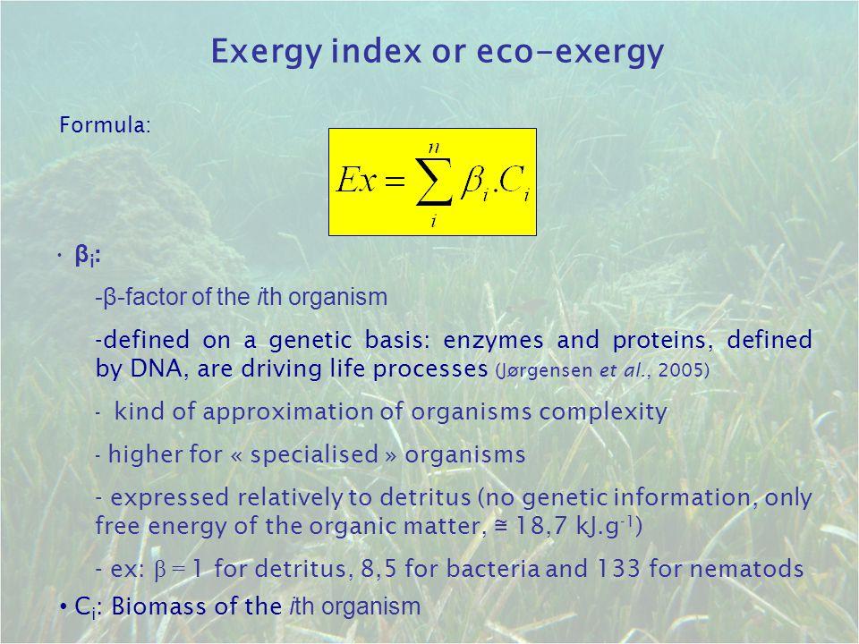 Exergy index or eco-exergy