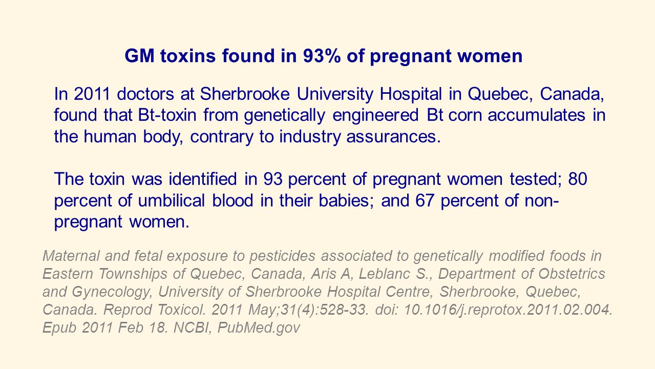 GM toxins found in 93% of pregnant women