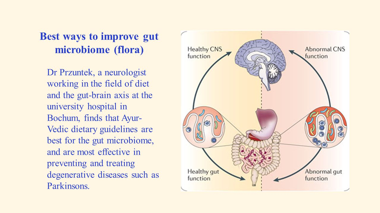 Best ways to improve gut microbiome (flora)
