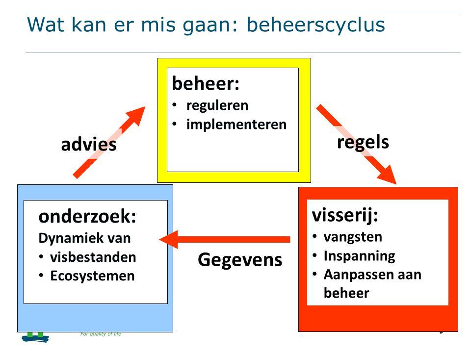 Wat kan er mis gaan: beheerscyclus
