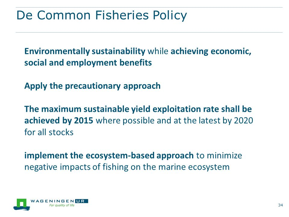 De Common Fisheries Policy