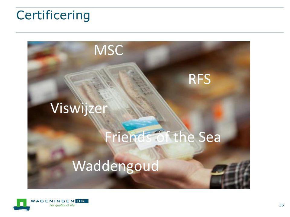 Certificering MSC RFS Viswijzer Friends of the Sea Waddengoud