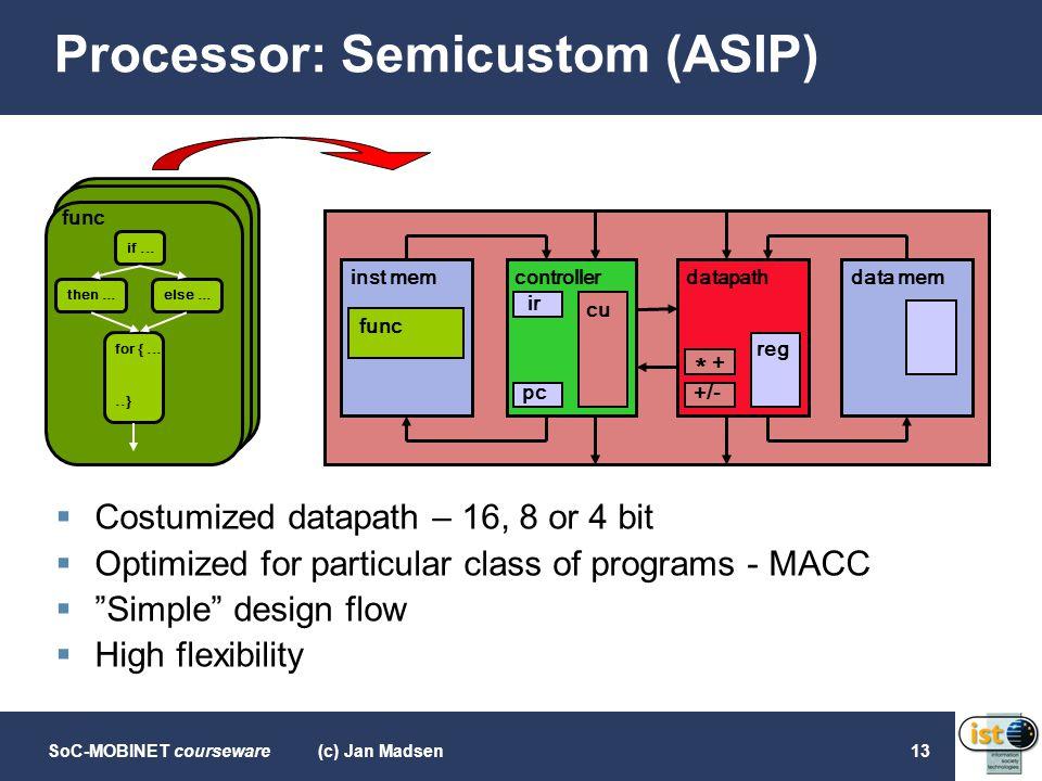 Processor: Semicustom (ASIP)
