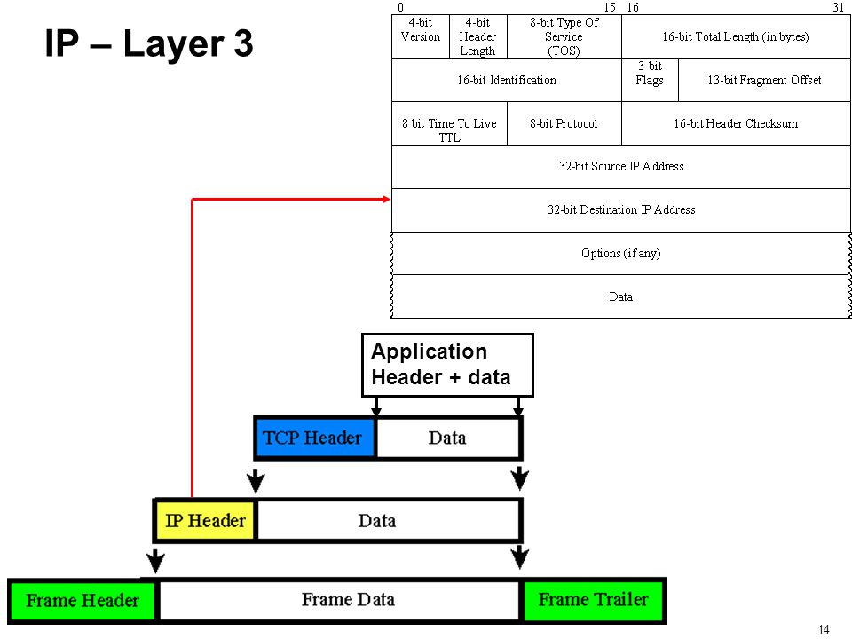 IP – Layer 3 Application Header + data