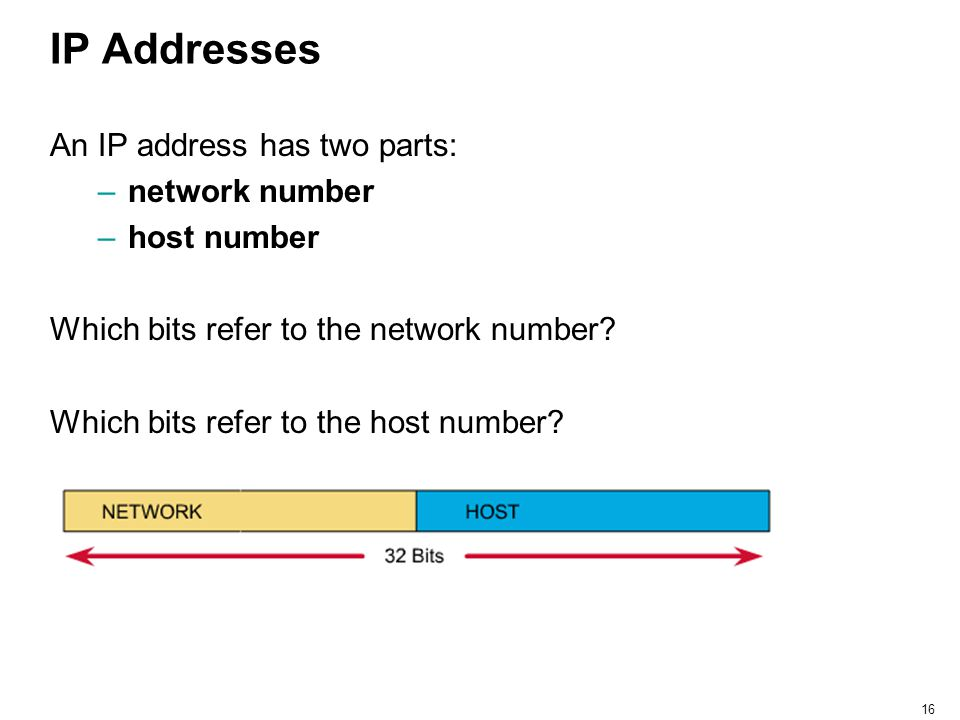 IP Addresses An IP address has two parts: network number host number