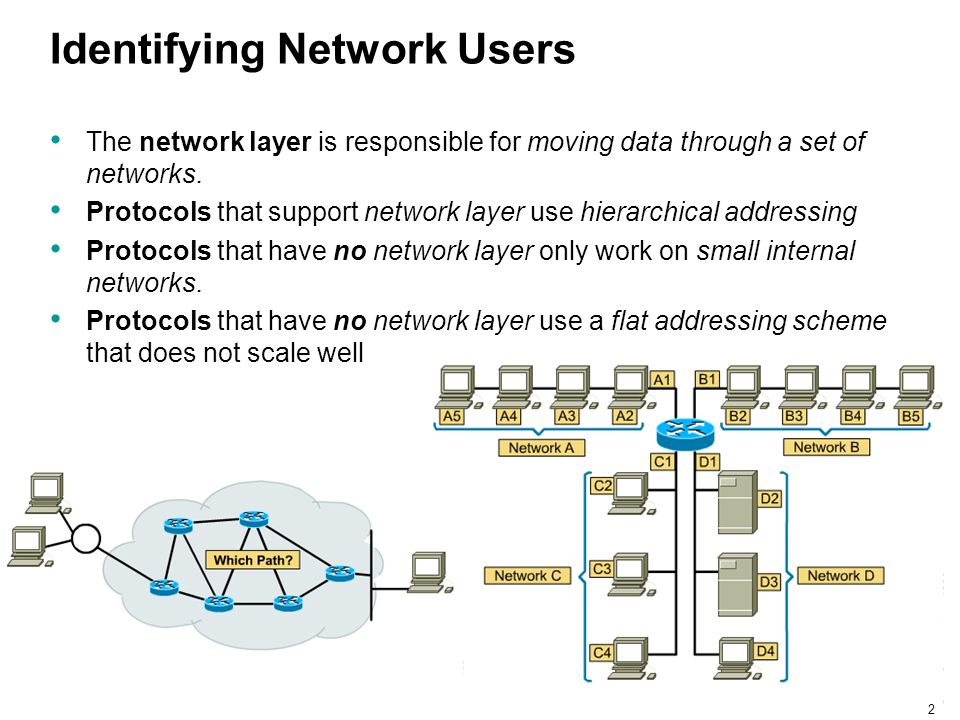 Identifying Network Users