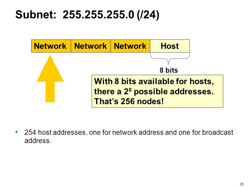Subnet: 255.255.255.0 (/24) Network Network Network Host