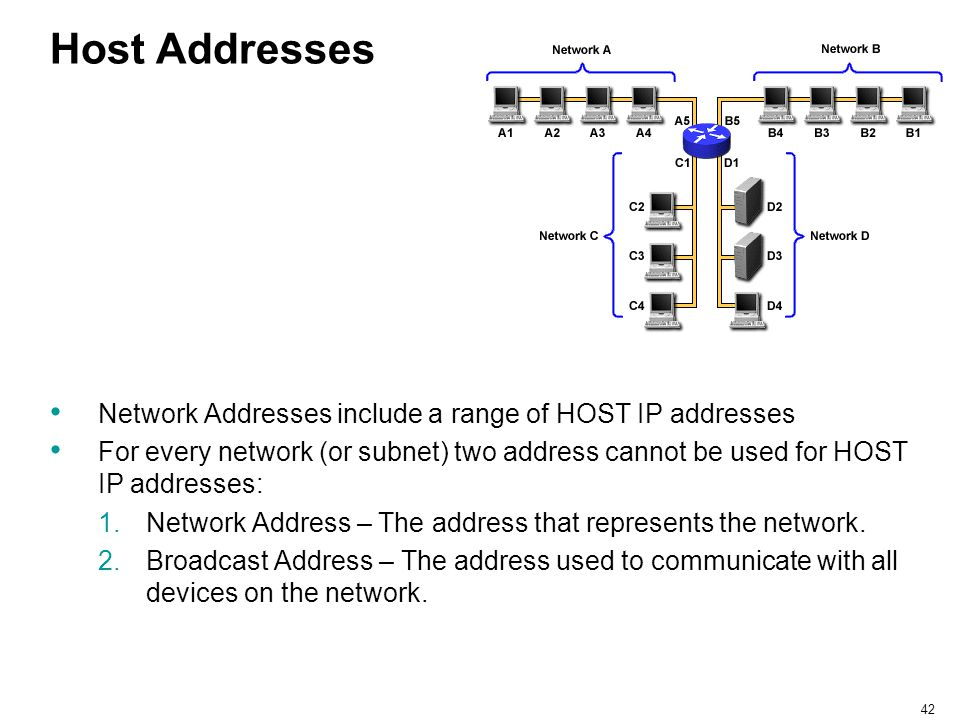 Host Addresses Network Addresses include a range of HOST IP addresses