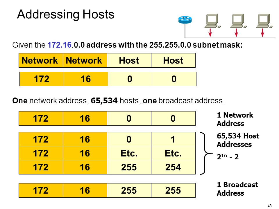 Addressing Hosts Network Network Host Host 172 16 172 16 172 16 1 172