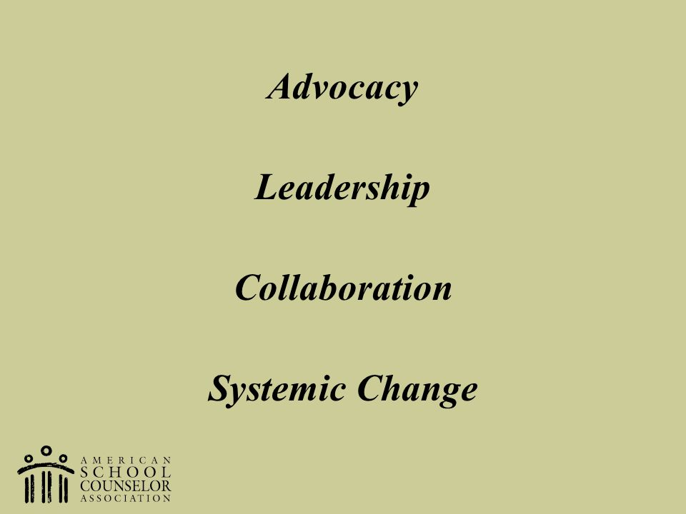 Advocacy Leadership Collaboration Systemic Change