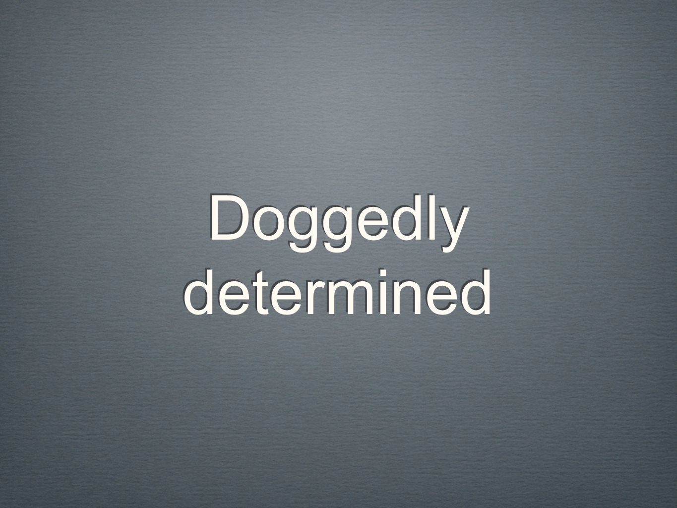 Doggedly determined