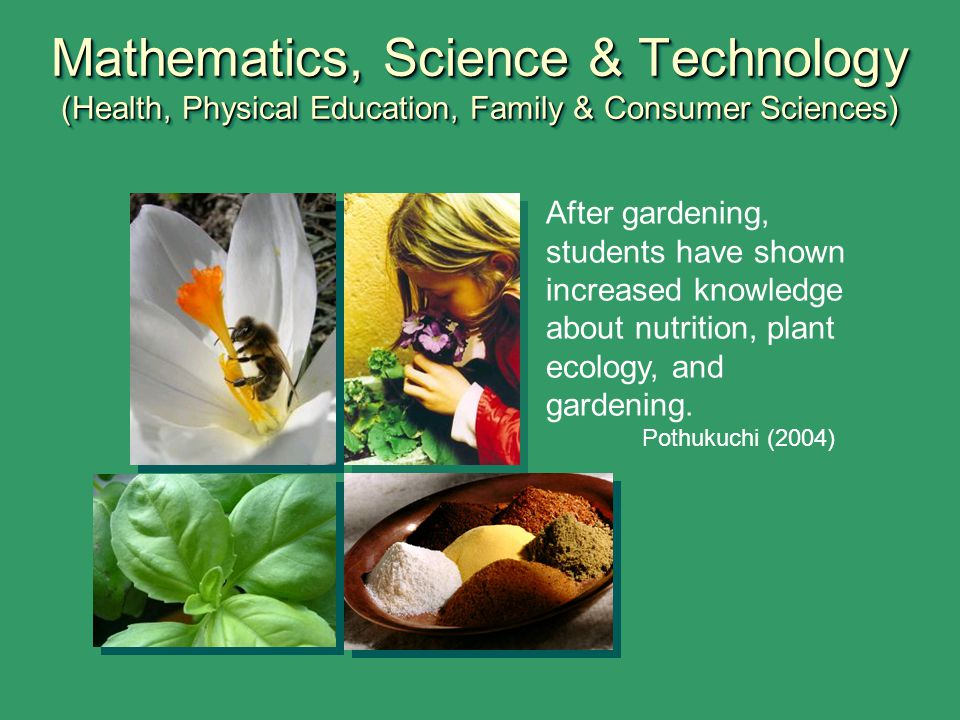 Mathematics, Science & Technology (Health, Physical Education, Family & Consumer Sciences)