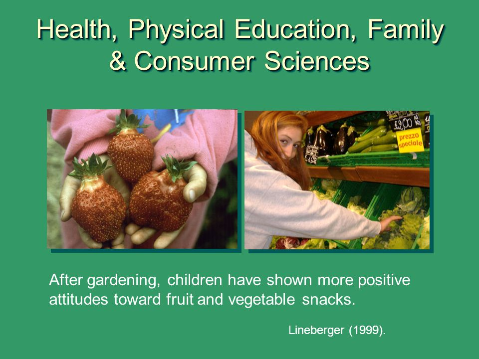 Health, Physical Education, Family & Consumer Sciences