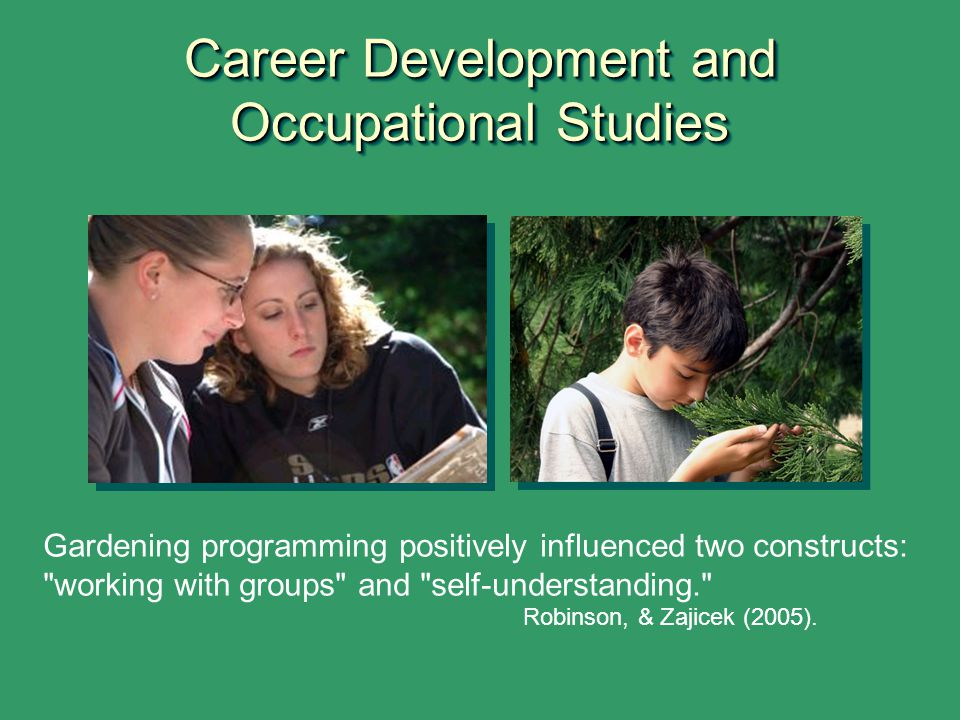 Career Development and Occupational Studies