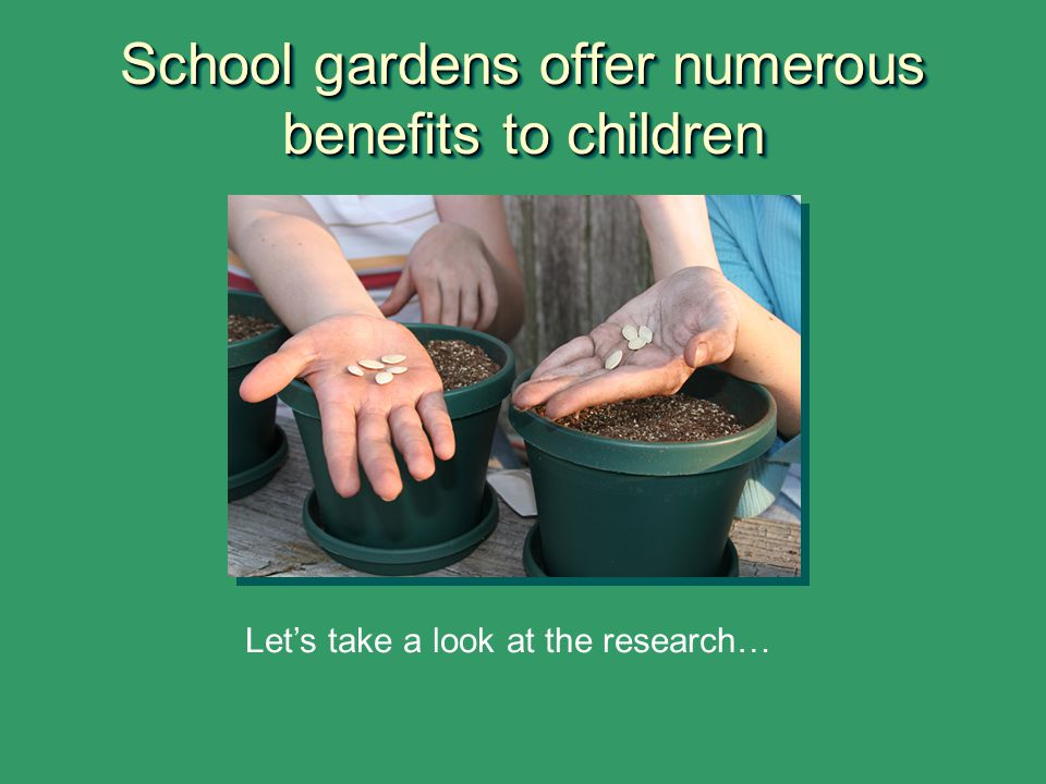 School gardens offer numerous benefits to children