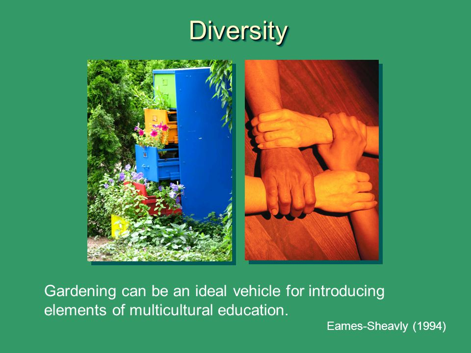 Diversity Eames-Sheavly, M. 1994. Exploring horticulture in human culture: An interdisciplinary approach to youth education. HortTechnology 4(1).