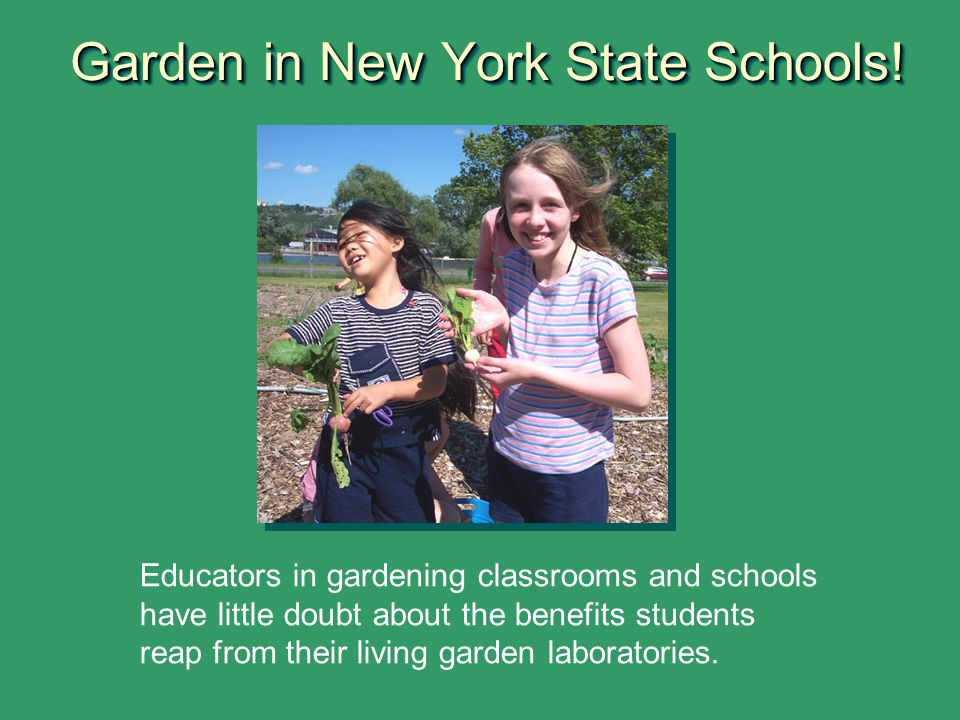 Garden in New York State Schools!