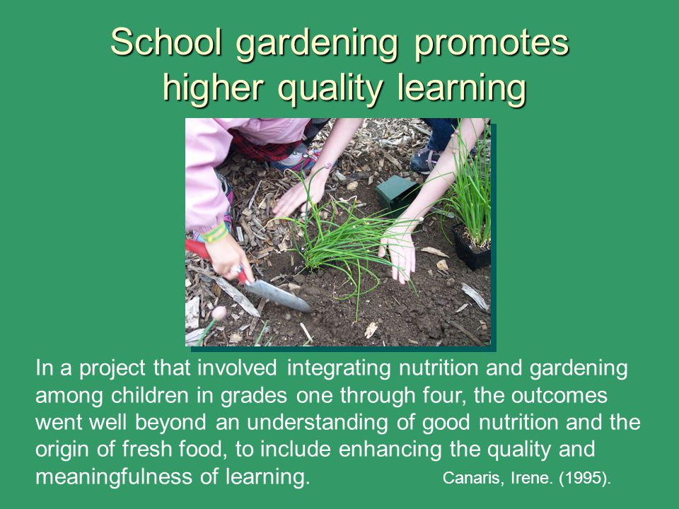 School gardening promotes higher quality learning