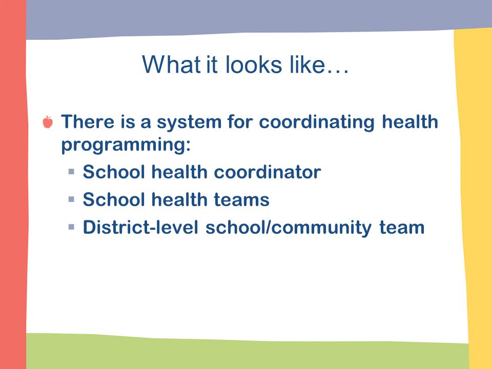What it looks like… There is a system for coordinating health programming: School health coordinator.