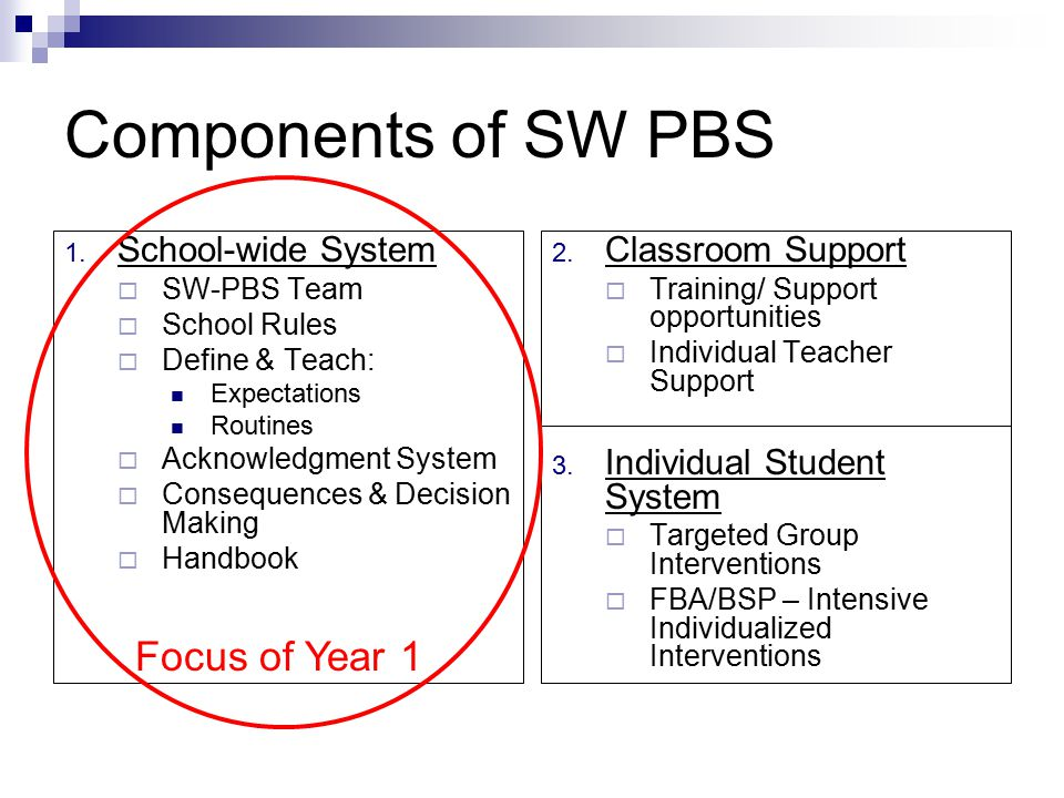 Components of SW PBS Focus of Year 1 School-wide System
