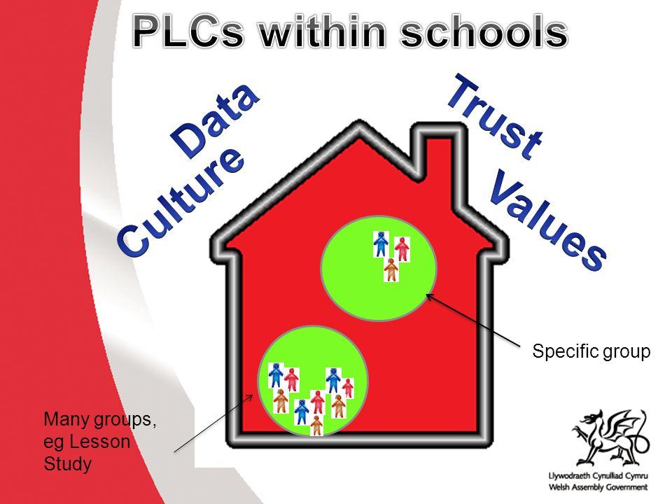 PLCs within schools Data Trust Culture Values