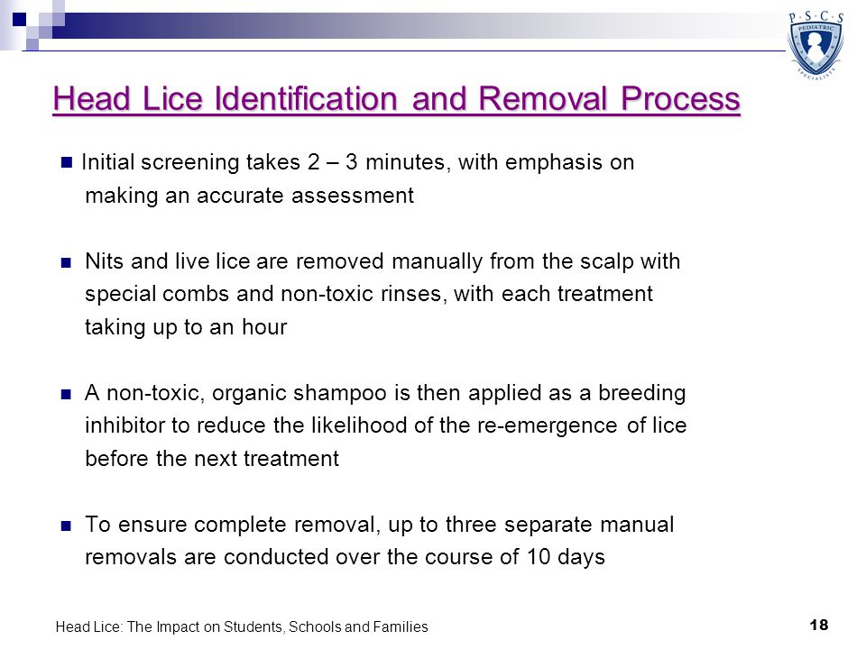 Head Lice Identification and Removal Process