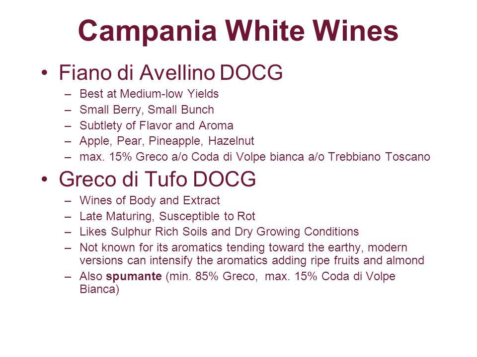 Campania White Wines Fiano di Avellino DOCG Greco di Tufo DOCG