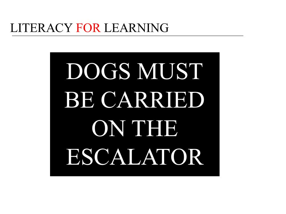DOGS MUST BE CARRIED ON THE ESCALATOR