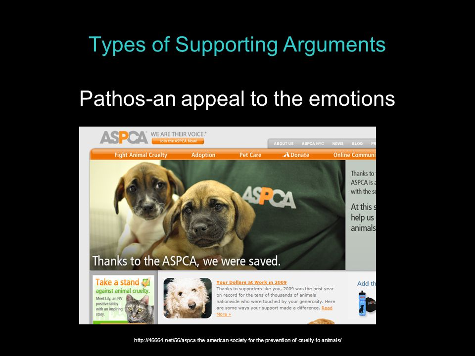Types of Supporting Arguments