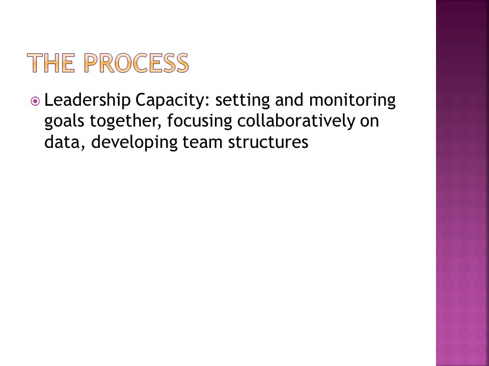 The Process Leadership Capacity: setting and monitoring goals together, focusing collaboratively on data, developing team structures.