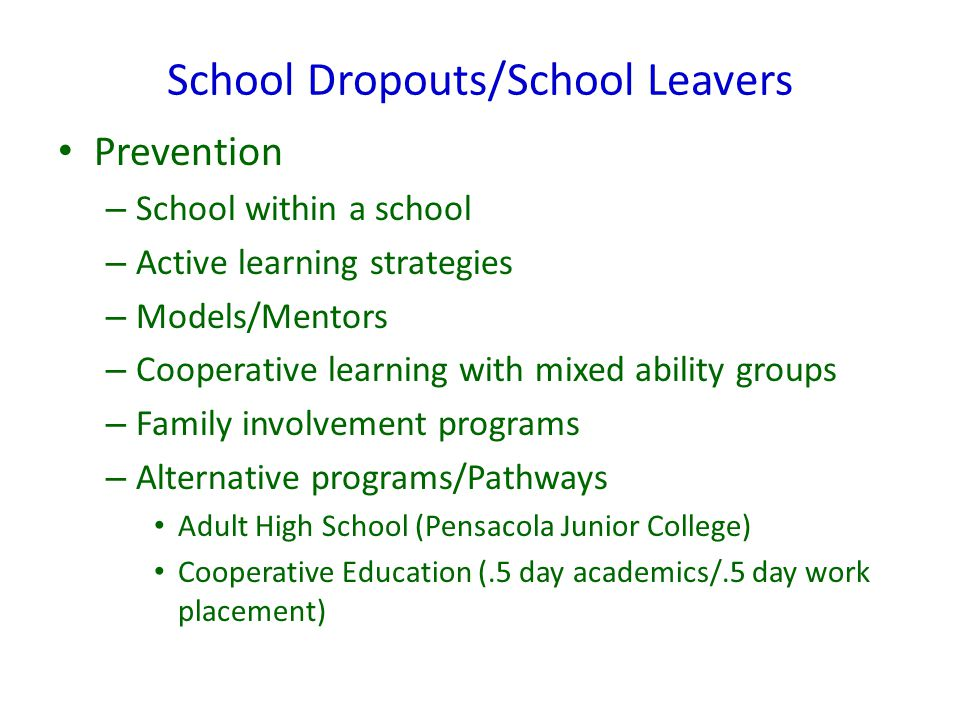 School Dropouts/School Leavers