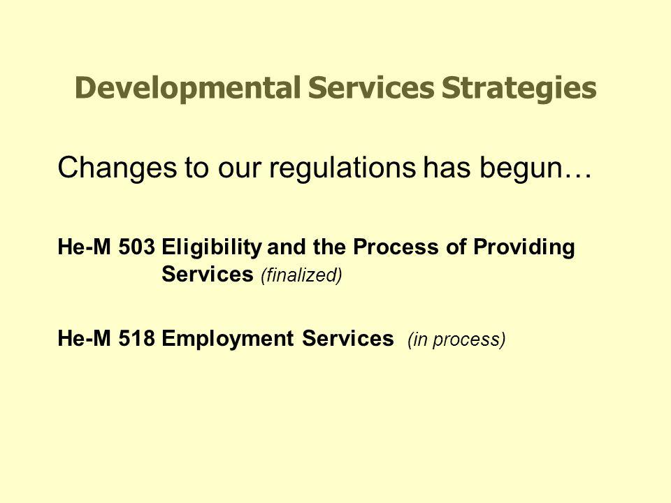 Developmental Services Strategies