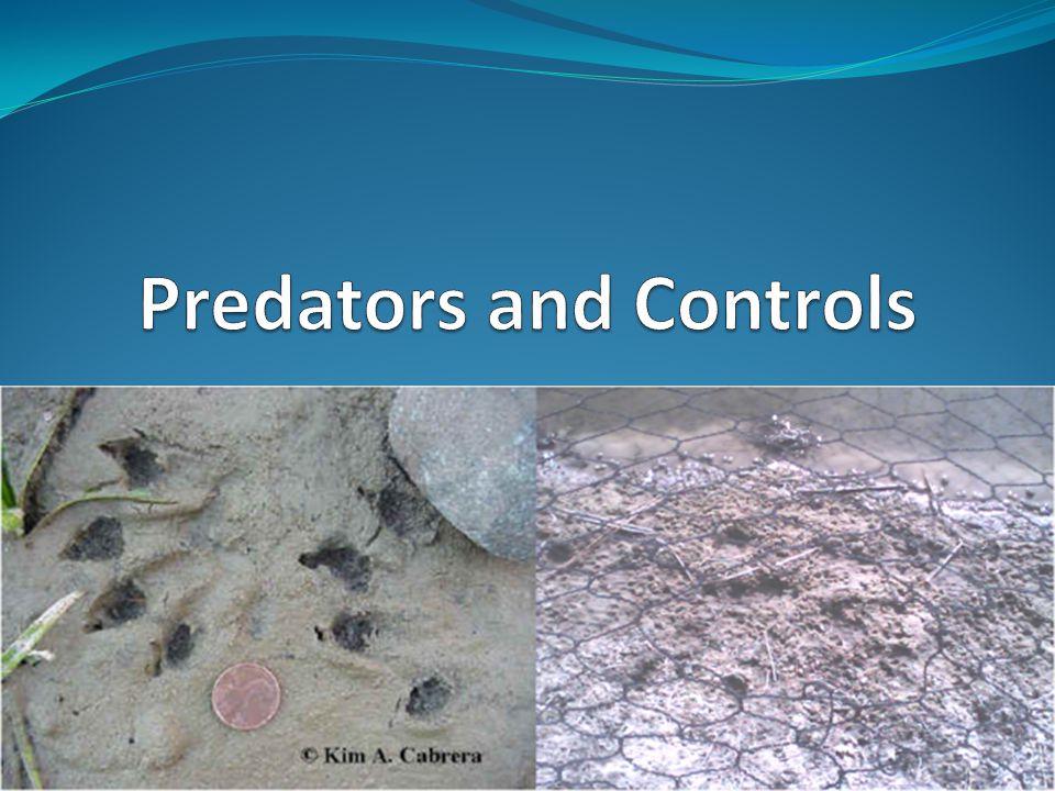 Predators and Controls