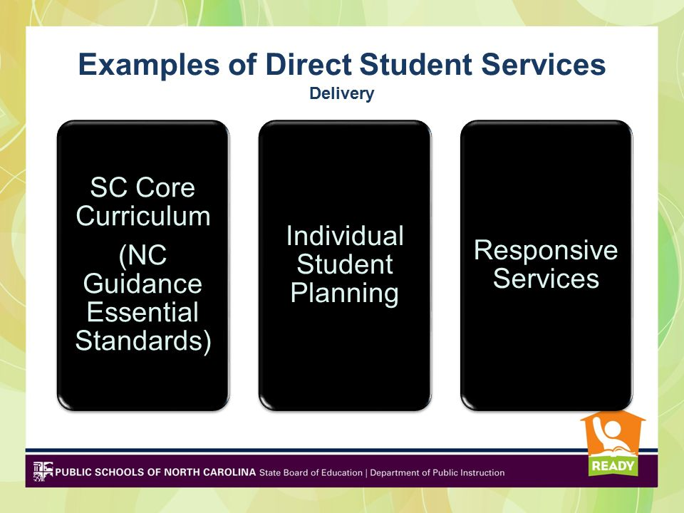 Examples of Direct Student Services Delivery