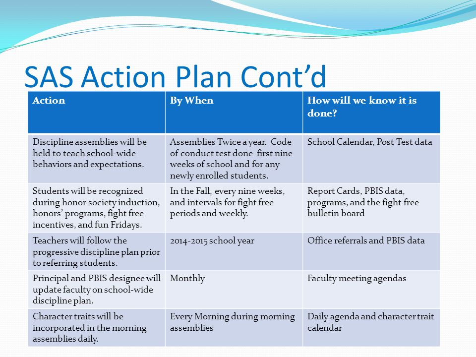 SAS Action Plan Cont'd Action By When How will we know it is done