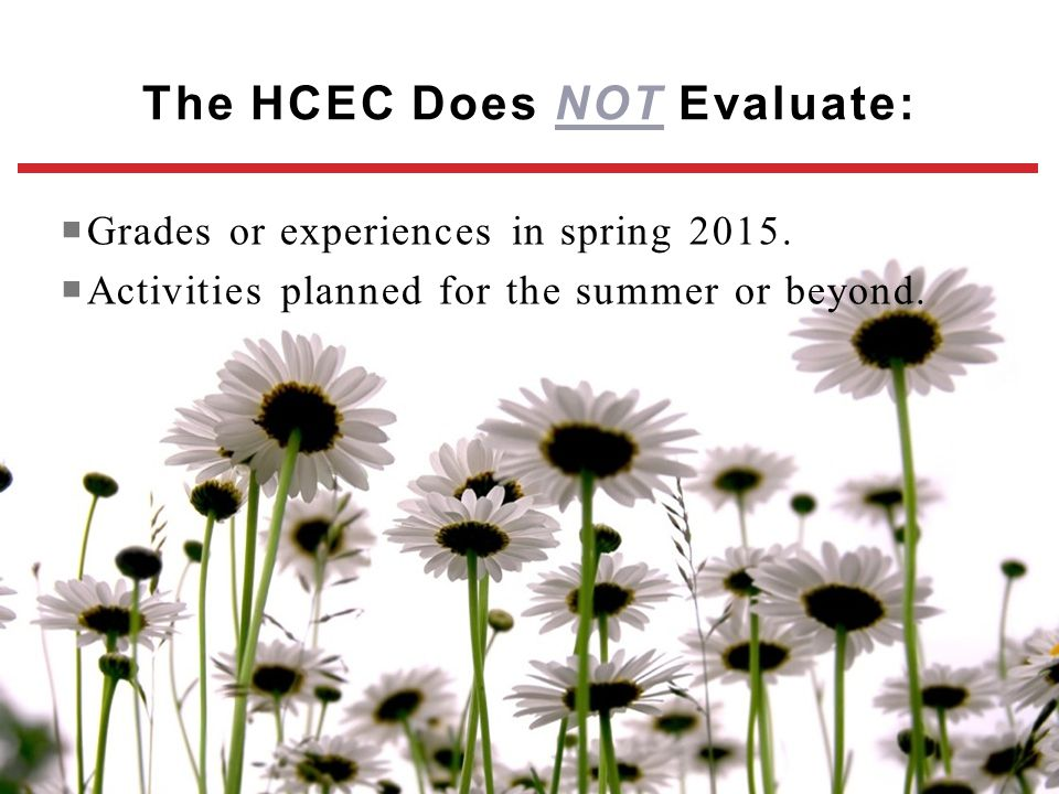 The HCEC Does NOT Evaluate: