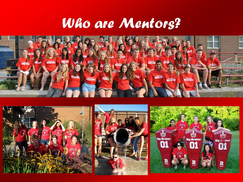 Who are Mentors